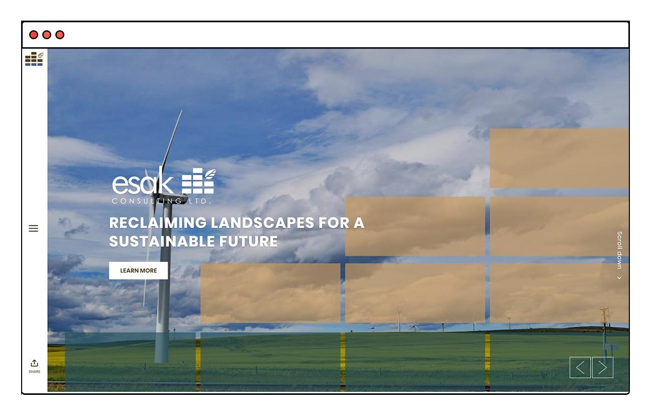 ESAK Consulting Website Design